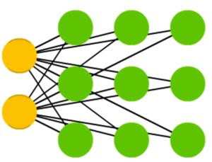 Kohonen 网络