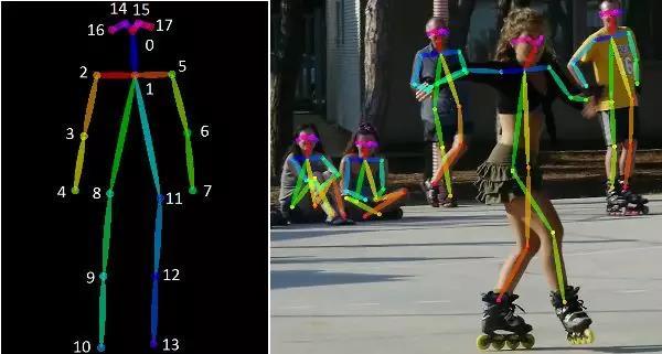 左:人体姿态骨架图的 COCO 关键点格式 ;右:渲染后的人体姿态图