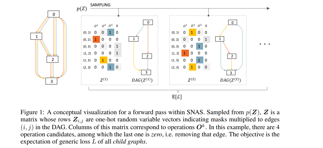 A conceptual visualization for a forward pass within SNAS.
